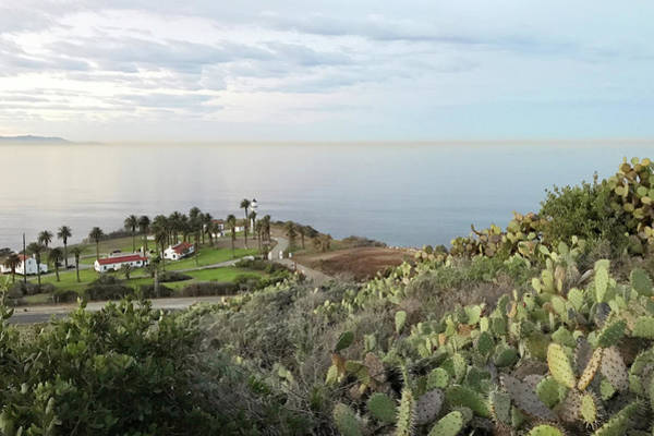 Point Vicente Wall Art - Photograph - Palos Verdes Peninsula by Art Block Collections