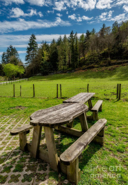 Wall Art - Photograph - Park Bench by Adrian Evans