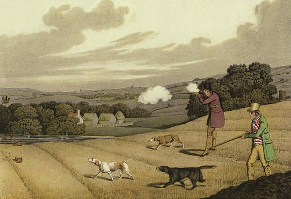 Aim Painting - Partridge Shooting by Henry Thomas Alken