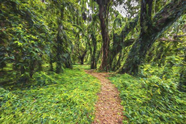 Digital Art - Pass Thru The Forest by Jon Glaser
