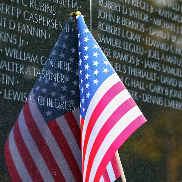 Wall Art - Photograph - Patriots by Mitch Cat