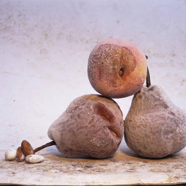 Vitamin Photograph - Pears by Bernard Jaubert