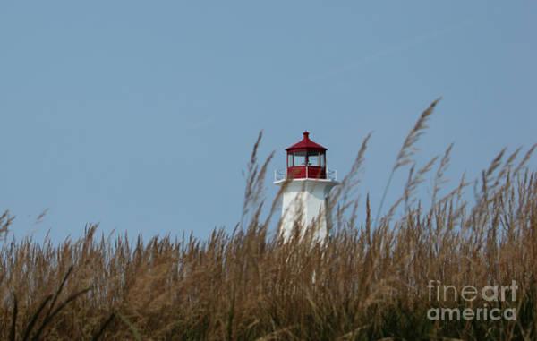 Photograph - Peggy's Cove Lighthouse by Wilko Van de Kamp