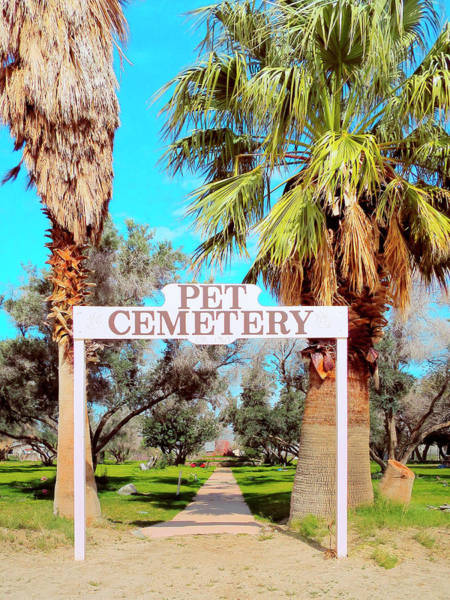 Wall Art - Photograph - Pet Cemetery by Dominic Piperata