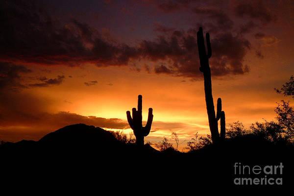 Photograph - Phoenix Metro Morning 3 by Michael Smith-Sardior