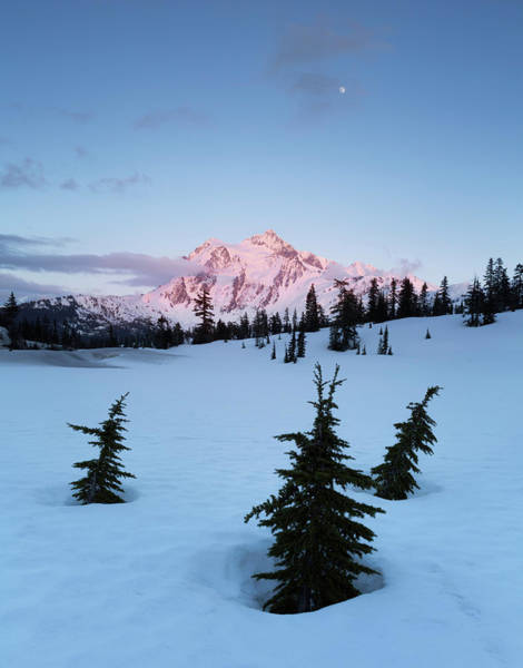 Snowshoe Photograph - Picture Lake Sunset by Ryan McGinnis