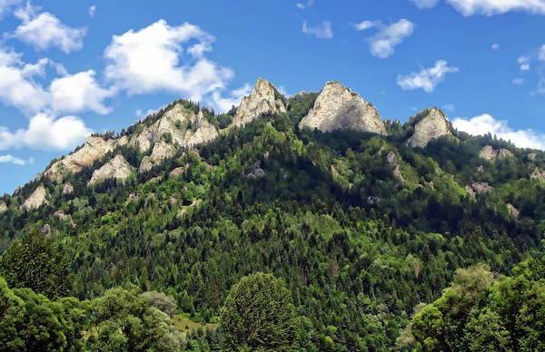 Photograph - Pieniny Mountain Range by Anthony Dezenzio