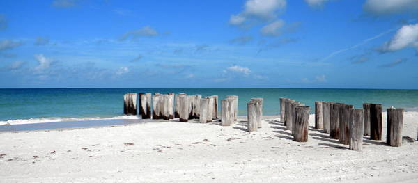 Photograph - Pillar To Post by Sean Allen