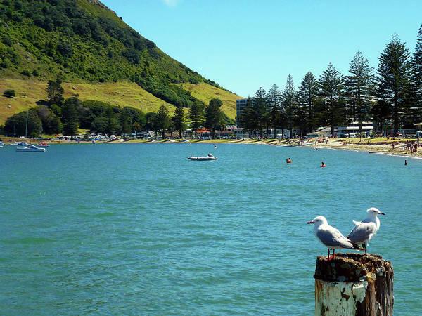 Photograph - Pilot Bay Beach 5 - Mt Maunganui Tauranga New Zealand by Selena Boron