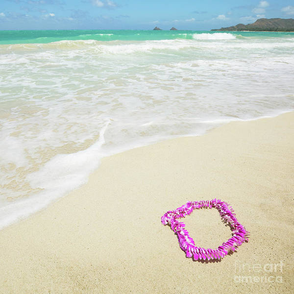 Photograph - Pink Lei On Beach - Hipster Photo Square by Charmian Vistaunet