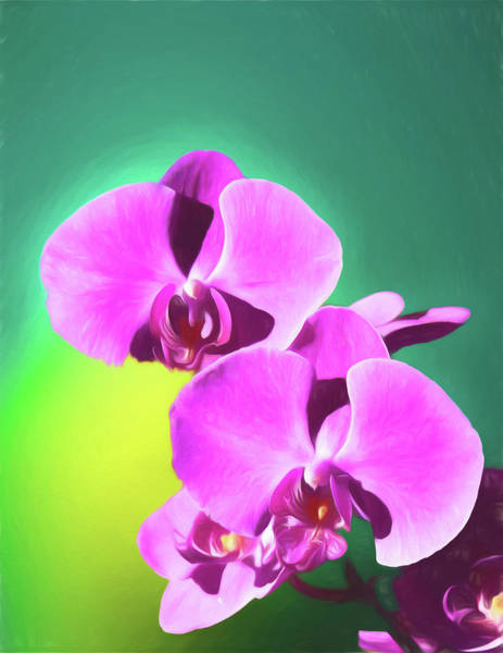 Digital Art - Pink Orchids by Rusty R Smith