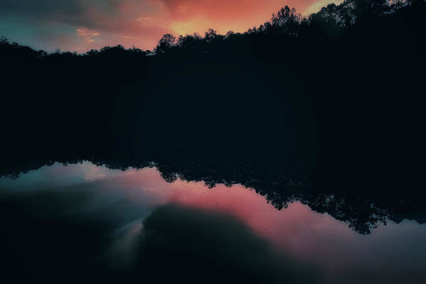 Photograph - Pink Sunset by Mike Dunn