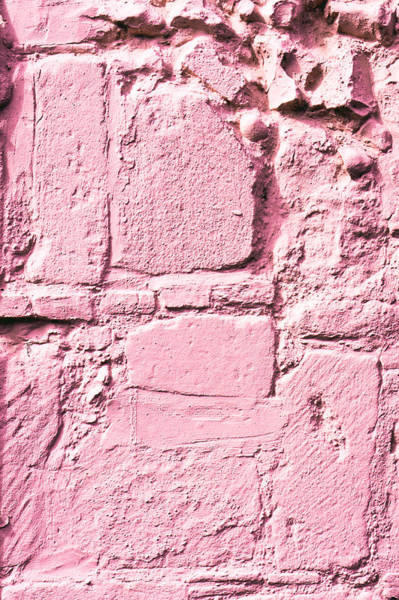 Cement Photograph - Pink Wall by Tom Gowanlock