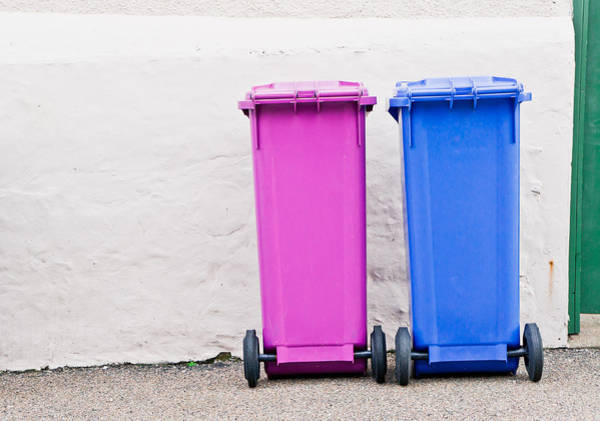 Bin Wall Art - Photograph - Plastic Bins by Tom Gowanlock