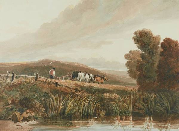 Ploughing Painting - Ploughing by David Cox