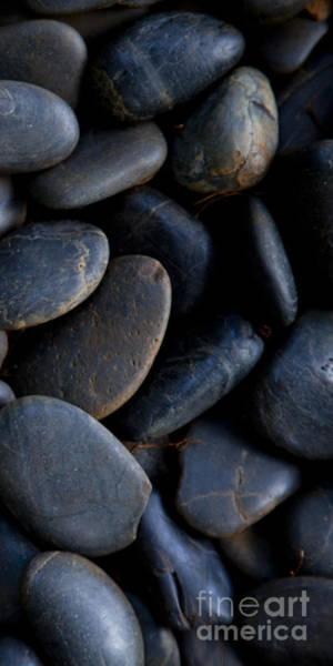 Plumeria Photograph - Plumeria Pebbles  - Part 3 Of 3 by Sean Davey