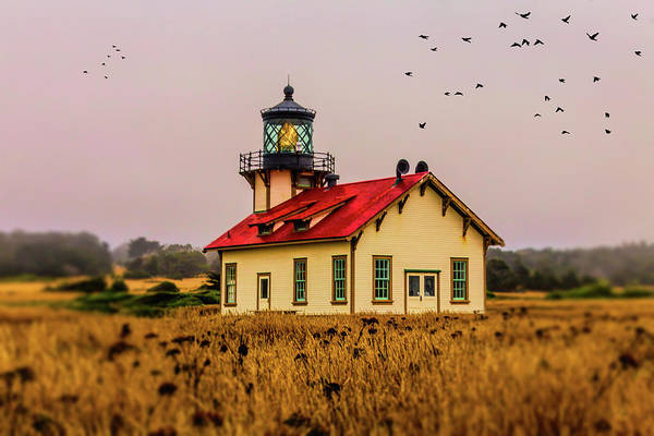 Carrillo Photograph - Point Cabrillo Lighthouse by Garry Gay