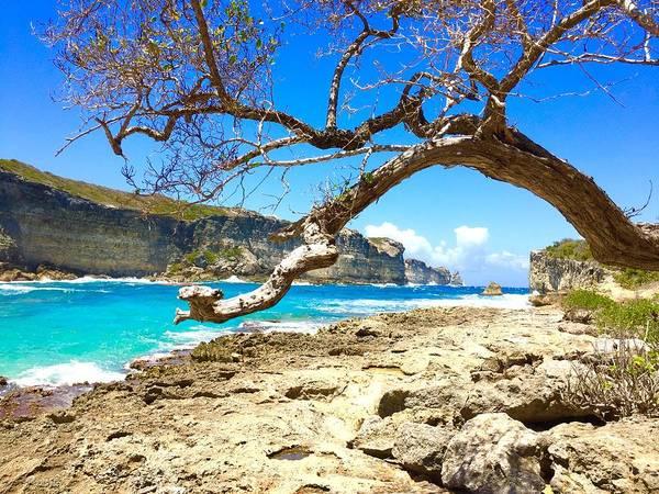 Photograph - Porte D Enfer, Guadeloupe by Cristina Stefan