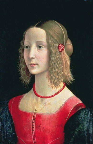 Camomile Painting - Portrait Of A Girl by Domenico Ghirlandaio
