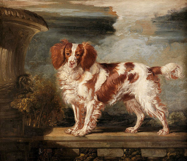 Ward Painting - Portrait Of Dash, A Favourite Spaniel, The Property Of Lady Frances Vane-tempest by James Ward
