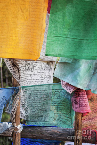 Photograph - Prayer Flags by Scott Kemper