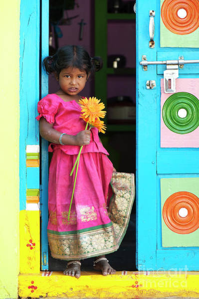 South India Photograph - Pretty In Pink by Tim Gainey