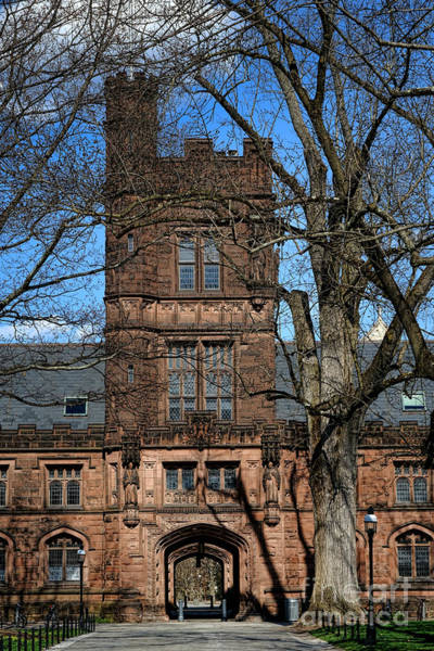 Photograph - Princeton University East Pyne Hall Tower by Olivier Le Queinec