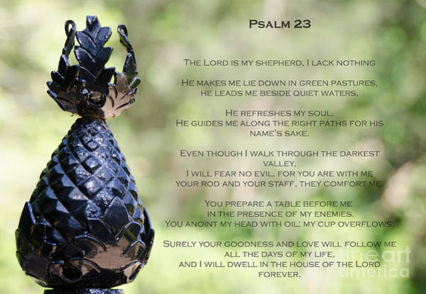 Photograph - Psalm 23 by Andrea Anderegg