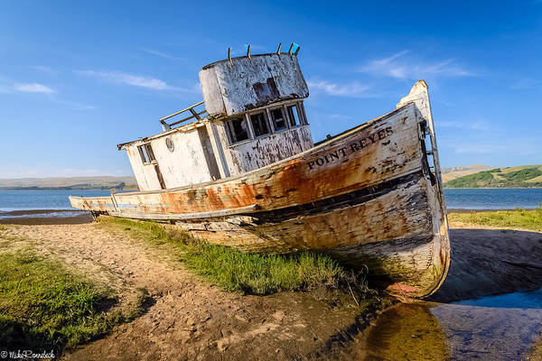 Pt. Reyes Photograph - Pt Reyes by Mike Ronnebeck