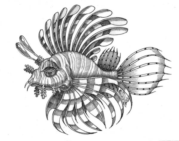 Drawing - Pterois by Victor Molev
