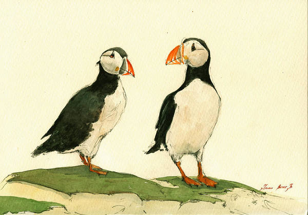 Wall Art - Painting - Puffins  by Juan  Bosco
