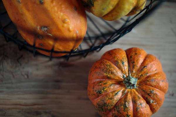 Pumpkins Wall Art - Photograph - Pumpkin by Nailia Schwarz