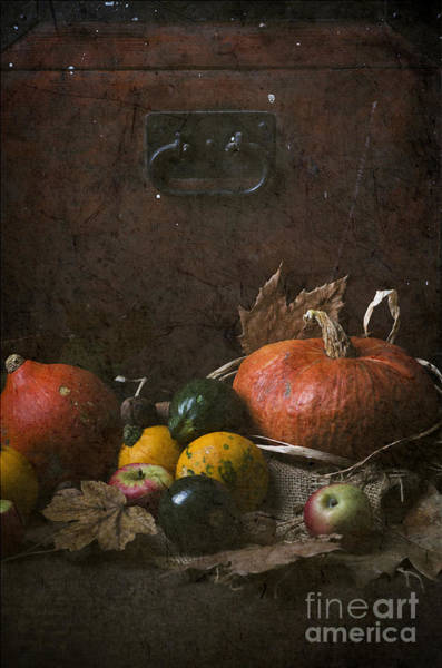 Wall Art - Digital Art - Pumpkins by Jelena Jovanovic