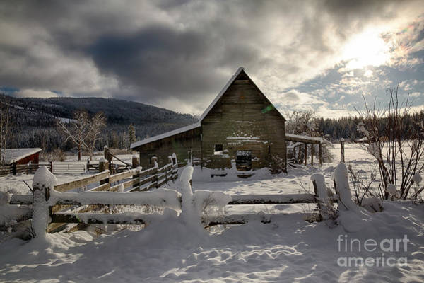 Boundary County Photograph - Purcell Barn by Idaho Scenic Images Linda Lantzy