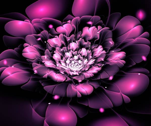 Digital Art - Purple Flower by Anastasiya Malakhova