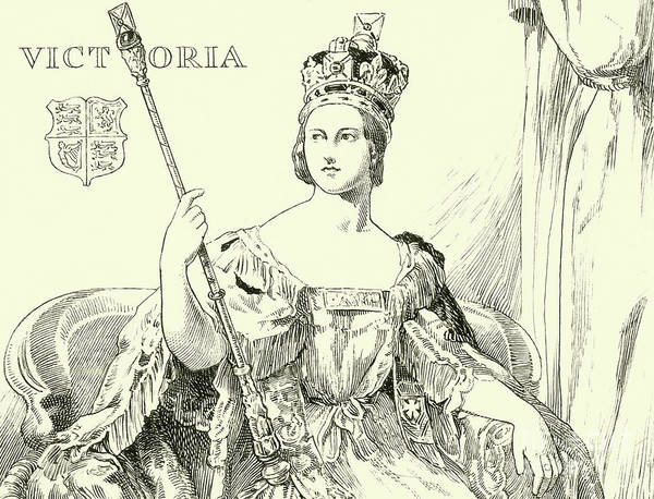 Victoria Drawing - Queen Victoria by English School