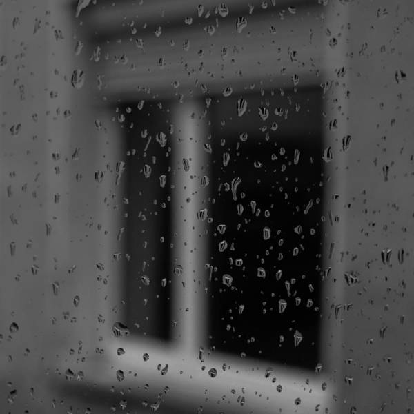 Photograph - Rain Drops by Miguel Winterpacht