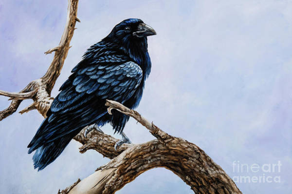 Painting - Raven by Igor Postash