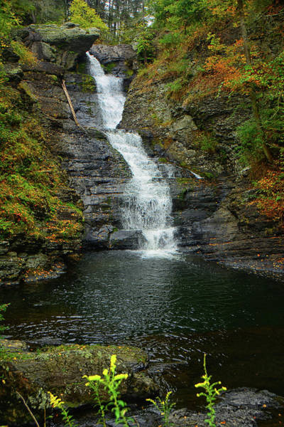 Photograph - Raymondskill Falls by Raymond Salani III