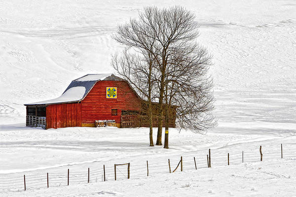 Photograph - Red Barn In Snow by Ken Barrett