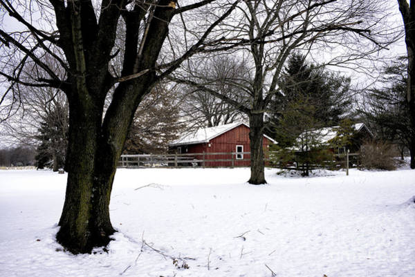 Photograph - Red Barn In Winter by John Rizzuto