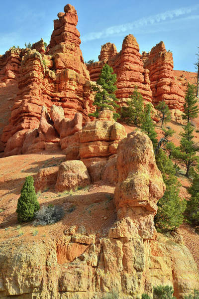 Photograph - Red Canyon Hoodoos by Ray Mathis