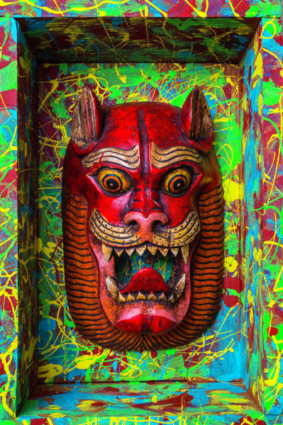 Wall Art - Photograph - Red Cat Mask by Garry Gay