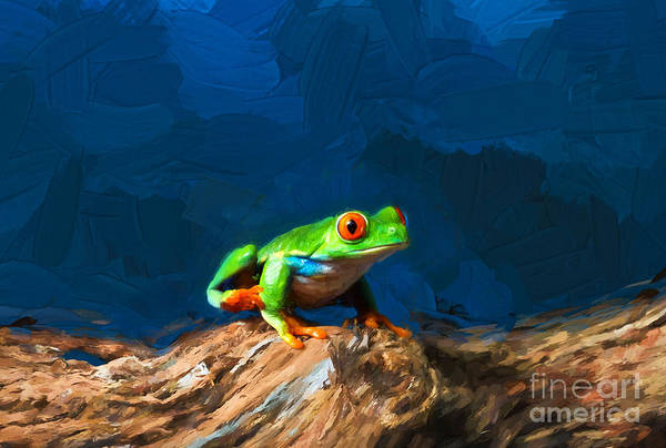 Photograph - Red-eyed Tree Frog by Les Palenik