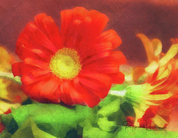 Photograph - Red Flower by Reynaldo Williams