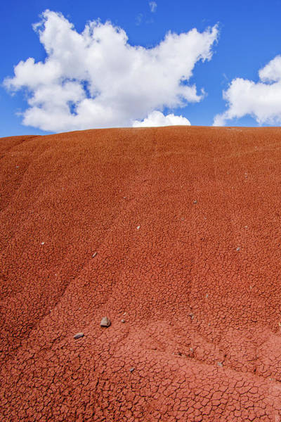 Wall Art - Photograph - Red Painted Hills by John Trax
