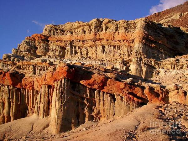 Wall Art - Photograph - Red Rock Canyon by James Carr