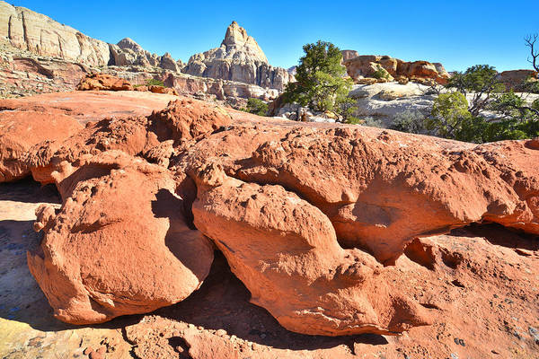 Photograph - Red Rock by Ray Mathis