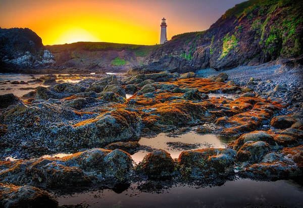 Photograph - Red Trail To Yaquina Lighthouse by Michael Ash
