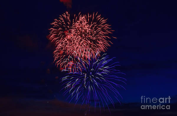 Fireworks Show Wall Art - Photograph - Red White And Blue by Robert Bales